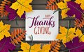 Thanksgiving holiday banner, paper colorful tree leaves on wooden background. Autumn design, for fall season poster, thanksgiving Royalty Free Stock Photo