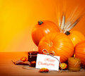 Thanksgiving holiday decoration border Royalty Free Stock Image