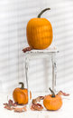 Thanksgiving pumpkin display on rustic white table with fall leaves Stock Image