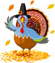 Thanksgiving Turkey Royalty Free Stock Photo