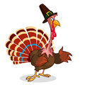Thanksgiving turkey mascot waving. Vector character isolated on white background.