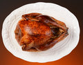 Thanksgiving turkey on platter overhead of a roasted a white horizontal format a light to dark warm background Stock Photos