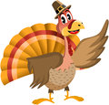 Thanksgiving turkey presenting illustration featuring a funny cartoon with pilgrim hat showing or indicating something with wing Stock Photos