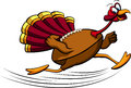 Thanksgiving Turkey Running
