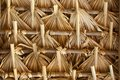Thatch in latin america primitive of palm leaves hot countries of south Royalty Free Stock Photo