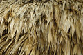 Thatch Roof Royalty Free Stock Images
