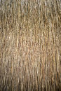 Thatch roof close up background Royalty Free Stock Photo
