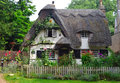 Thatched cottage with white walls and colourful garden.