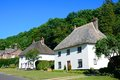 Thatched cottages, Milton Abbas. Royalty Free Stock Photo