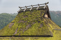 Thatched Rooftop