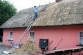 Thatching a roof Royalty Free Stock Images