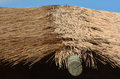 Thatching Straw roof Royalty Free Stock Photo