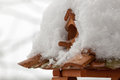 Thaw birdhouse covered with snow Stock Photography