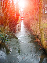 Thaw in the creek in sunlight in spring city Royalty Free Stock Photos