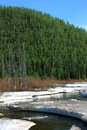 Thaw on a river in taiga Royalty Free Stock Photo