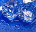 Thawing cubes Stock Photo