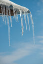 Thawing icicles with water drops falling Stock Images