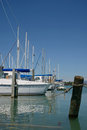 At their moorings sail boats rest the motueka yacht club in new zealand Stock Photos