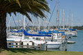 At their moorings sail boats rest the motueka yacht club in new zealand Royalty Free Stock Photos