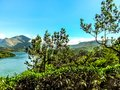 Beautiful landscape with wild forest and Periyar River, Kerala, India Royalty Free Stock Photo