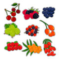 The theme berries