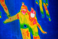 Thermal Image Royalty Free Stock Photo