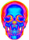 Thermal image of the human skull Royalty Free Stock Photo