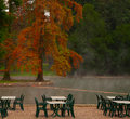 Thermal lake green tables and chairs near a with big red tree on the back Royalty Free Stock Images