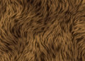 Thick Animal Hair Texture