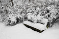 Thickly snow-covered bench, trees, bushes in park Royalty Free Stock Photo