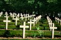 Thiepval missing people memorial graves with wooden crosses Stock Image