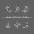 Thin line vector icons - aquarium flora and fauna