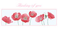 Thinking of you Card - Poppies Royalty Free Stock Photography