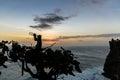 Thirsty monkey sunset behind a near uluwatu bali indonesia Stock Photography