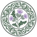 Thistle Flower And Ornament Round Leaf Thistle. The Symbol Of Scotland