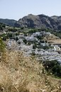 Thistles and white village in sierra nevada south spain europ europe Stock Photo