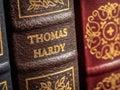 Thomas hardy fictional author or novelist Royalty Free Stock Photos