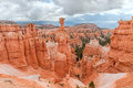 Thor's Hammer in Bryce Canyon National Park in Utah, USA Royalty Free Stock Photo