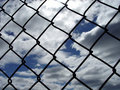 Though a Fence Royalty Free Stock Photo