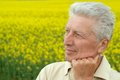 Thoughtful senior man cute in summer field Royalty Free Stock Images