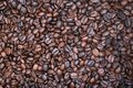 Thousands roasted coffee beans