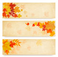 Three abstract autumn banners with color leaves. Royalty Free Stock Photo