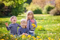 Three adorable kids, dressed in striped shirts, hugging and smiling Royalty Free Stock Photo