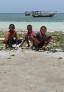 Three African boys harvested sea animals in the surf zone. Royalty Free Stock Photo