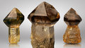 Three beautiful pieces of smoky quartz scepter natural raw Stock Photography