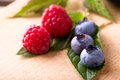 Three big blue blueberries on green leaf with red raspberries Royalty Free Stock Photo