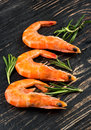Three boiled shrimp Royalty Free Stock Photo