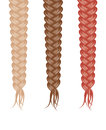 Three braids Stock Photography