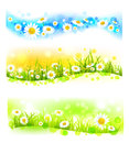 Three bright flower banners colorful Royalty Free Stock Photo