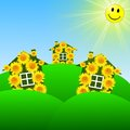 Three bright at home with yellow sunflowers on a green lawn